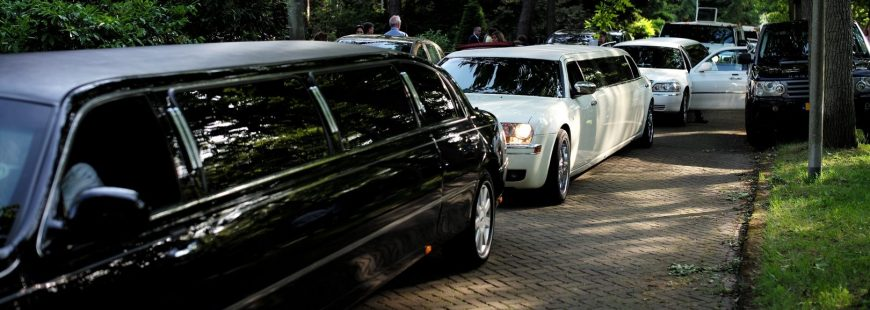 limo rental price - parked limousines